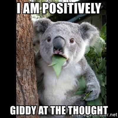 Koala can't believe it - I am positively giddy at the thought