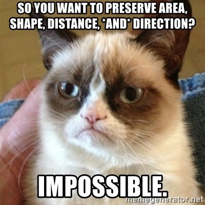 Grumpy Cat  - So you want to preserve area, shape, distance, *and* direction? IMPOSSIBLE.