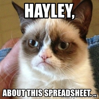 Grumpy Cat  - Hayley, about this spreadsheet. ..