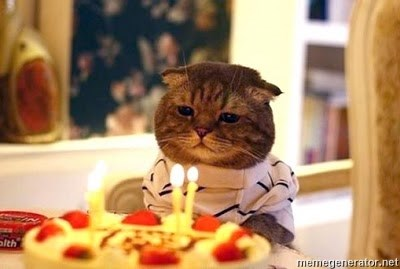 Birthday Cat -