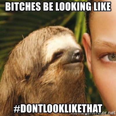 Whispering sloth - Bitches be looking like  #DontLookLikeThat