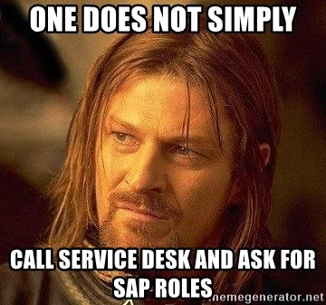 Boromir - One does not simply Call service desk and ask for SAP roles