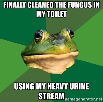 Foul Bachelor Frog - finally Cleaned the fungus in my toilet using my heavy urine stream