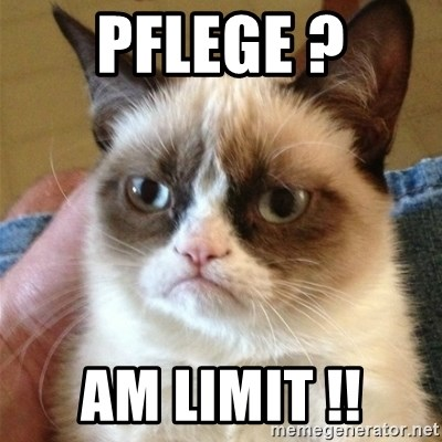 Grumpy Cat  - Pflege ? AM LIMIT !!