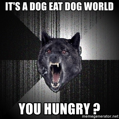 Insanity Wolf - It's a dog eat dog world You hungry ?
