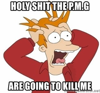 Fry Panic - holy shit the p.m.g are going to kill me