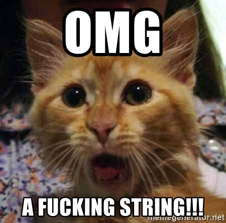 Crazy cat - omg a fucking string!!!