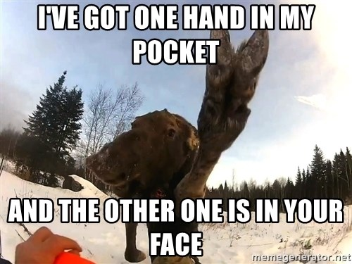 Peace Out Moose - I've got one hand in my pocket And the other one is in your face