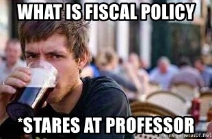 The Lazy College Senior - What is fiscal policy *stares at professor