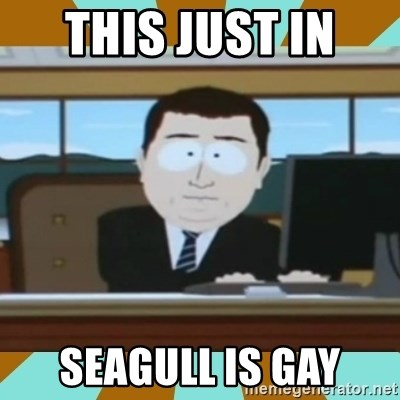 And it's gone - this just in  seagull is gay