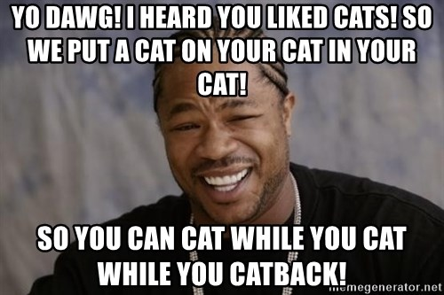 xzibit-yo-dawg - Yo Dawg! I heard you liked cats! So we put a cat on your cat in your cat! So you can cat while you cat while you catback!