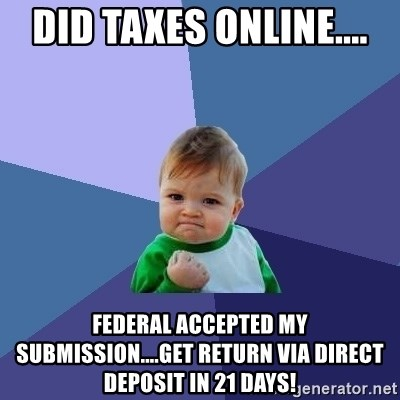 Success Kid - Did taxes online.... Federal accepted my submission....get return via direct deposit in 21 days!