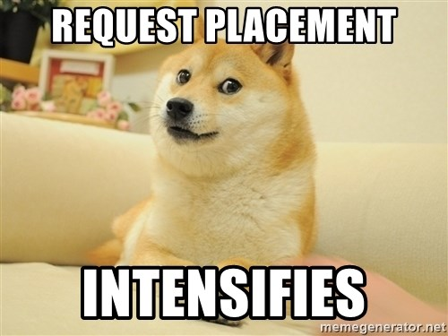 so doge - REQUEST PLACEMENT INTENSIFIES