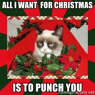 GRUMPY CAT ON CHRISTMAS - All I Want  For Christmas Is To Punch You