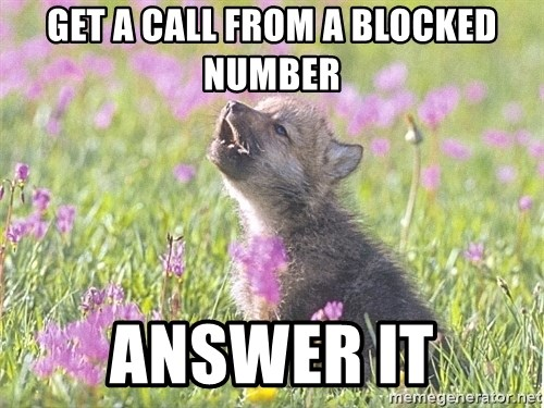 Baby Insanity Wolf - get a call from a blocked number answer it