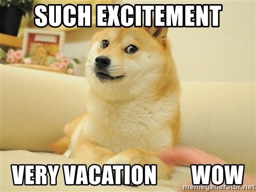 so doge - such excitement very vacation        wow