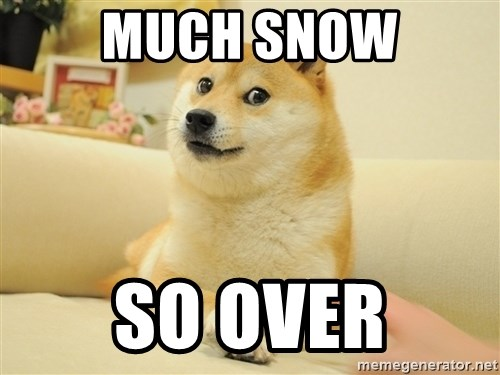 so doge - Much Snow So over