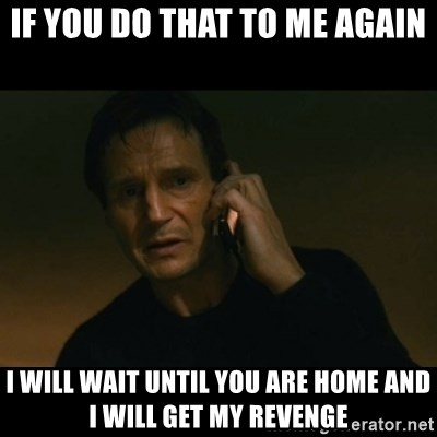 liam neeson taken - If you do that to me again I will wait until you are home and I will get my revenge