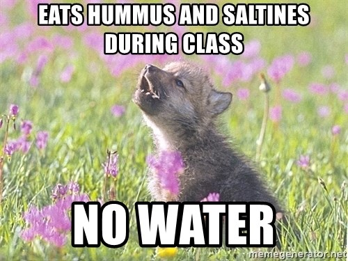 Baby Insanity Wolf - Eats hummus and saltines during class No water
