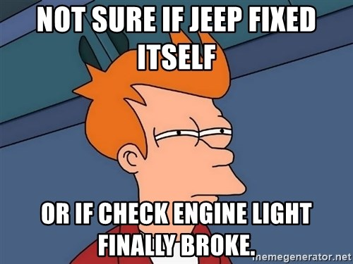 Futurama Fry - Not sure if Jeep fixed itself or if check engine light finally broke.