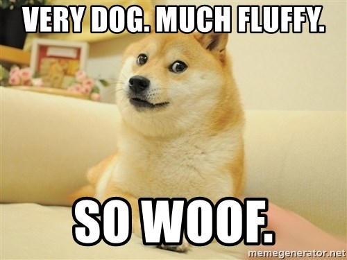 so doge - very dog. much fluffy. so woof.