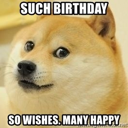 wow such doge1 - such birthday so wishes. many happy