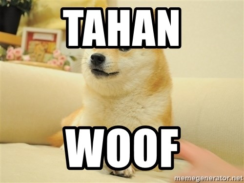 so doge - tahan woof