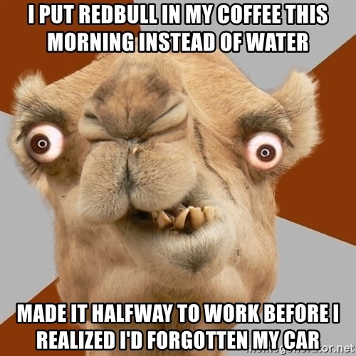 Crazy Camel lol - I put redbull in my coffee this morning instead of water Made it halfway to work before I realized I'd forgotten my car