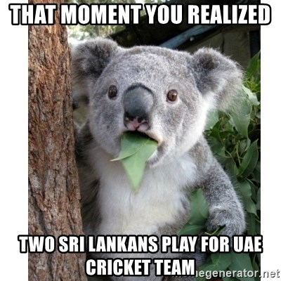 surprised koala - that moment you realized two sri lankans play for uae cricket team