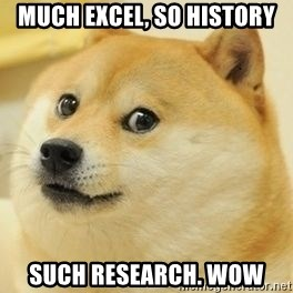 Real Doge - much excel, So history such research. wow