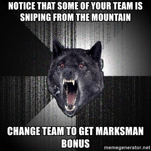 Insanity Wolf - Notice that some of your team is sniping from the mountain change team to get marksman bonus