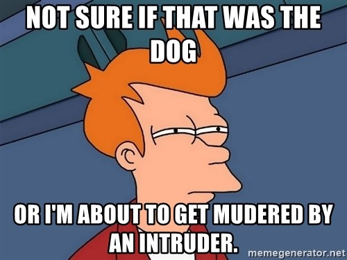 Futurama Fry - Not sure if that was the dog Or I'm about to get mudered by an intruder.