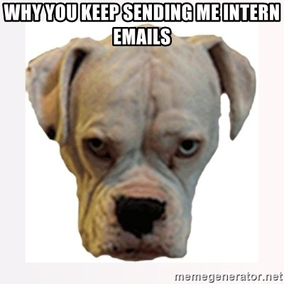 stahp guise - Why you keep sending me intern emails