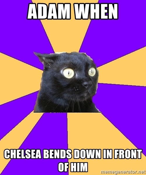 Anxiety Cat - Adam when  Chelsea bends down in front of him