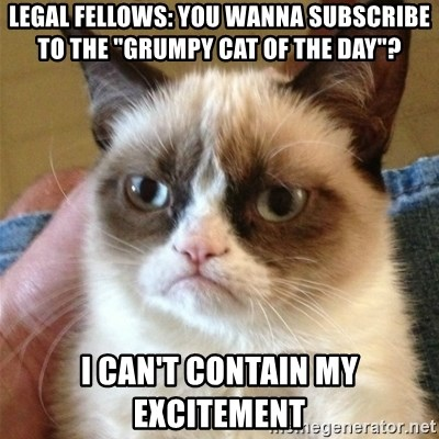 """Grumpy Cat  - LEGAL FELLOWS: YOU WANNA SUBSCRIBE TO THE """"GRUMPY CAT OF THE DAY""""? I CAN'T CONTAIN MY EXCITEMENT"""