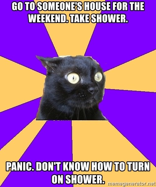 Anxiety Cat - Go to someone's house for the weekend. Take shower. Panic. Don't know how to turn on shower.