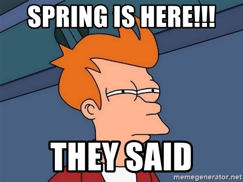 Futurama Fry - Spring is here!!! They said