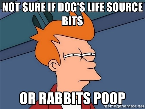 Futurama Fry - Not sure if dog's life source bits or rabbits poop