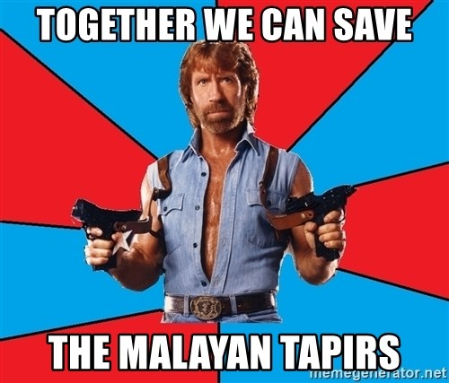 Chuck Norris  - TOGETHER WE CAN SAVE THE MALAYAN TAPIRS