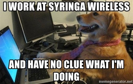 I have no idea what I'm doing - Dog with Tie - I work at Syringa wireless and have no clue what i'm doing