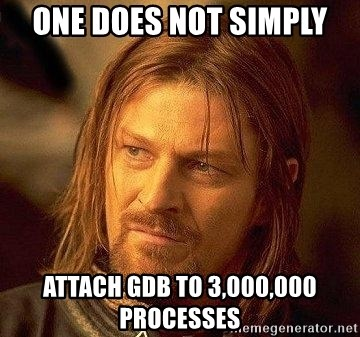 Boromir - ONE DOES NOT SIMPLY ATTACH GDB TO 3,000,000 PROCESSES