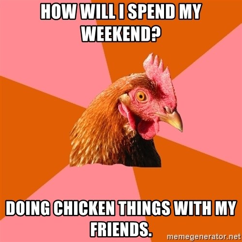 Anti Joke Chicken - How will I spend my weekend? Doing chicken things with my friends.