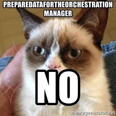 Grumpy Cat  - PrepareDataForTheOrchestrationManager No