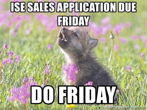 Baby Insanity Wolf - ISE sales application due Friday do friday