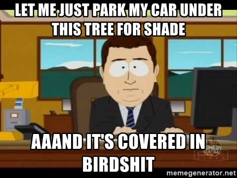 south park aand it's gone - Let me just park my car under this tree for shade aaand it's covered in birdshit