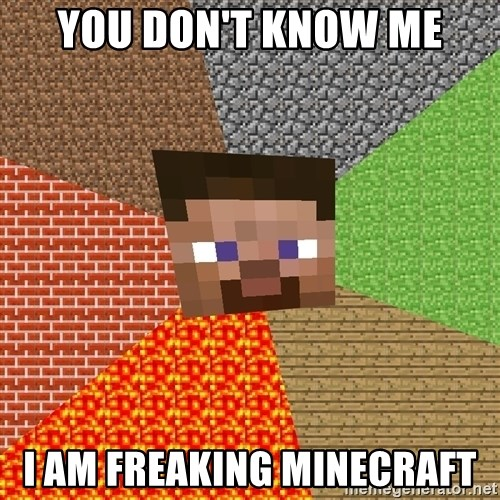 Minecraft Guy - you don't know me I am freaking minecraft