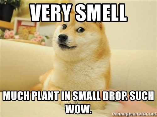so doge - very smell much plant in small drop. such wow.