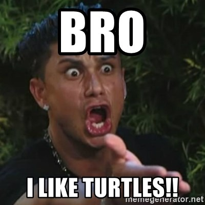 Angry Guido  - BRO I like turtles!!