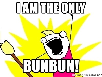 X ALL THE THINGS - I AM THE ONLY BUNBUN!