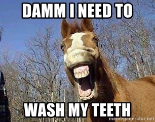Horse - Damm I need to  Wash my teeth